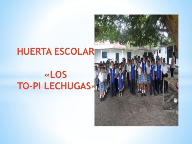 HUERTA ESCOLAR «LOS TO-PI LECHUGAS»