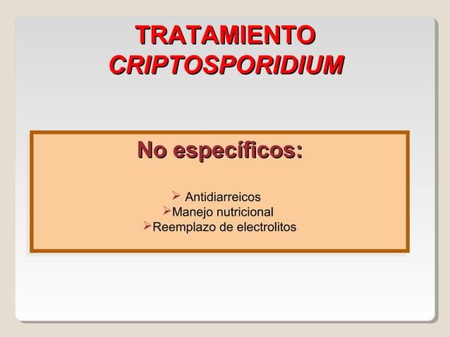 CLINICA - CYCLOSPORA INMUNOCOMPETENTE  Diarreas  Dolor abdominal  Nauseas  Debilidad  Anorexia  IMNUCOMPROMETIDO  SI...