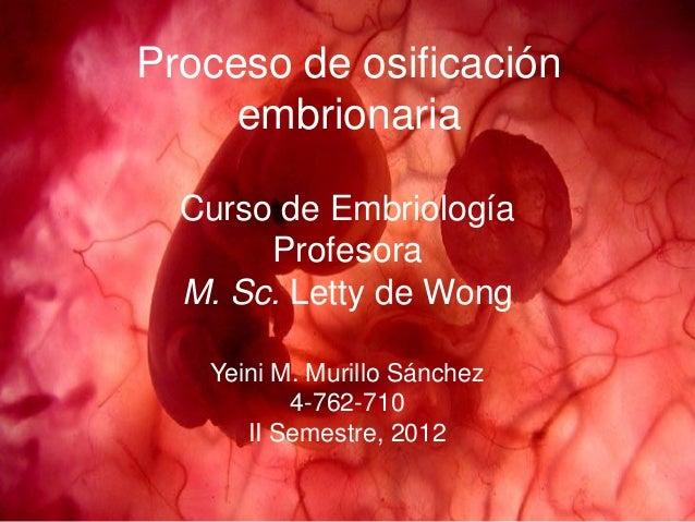 Proceso de osificación     embrionaria  Curso de Embriología       Profesora  M. Sc. Letty de Wong   Yeini M. Murillo Sánc...