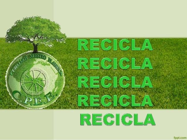 • Programas de Educación Ambiental