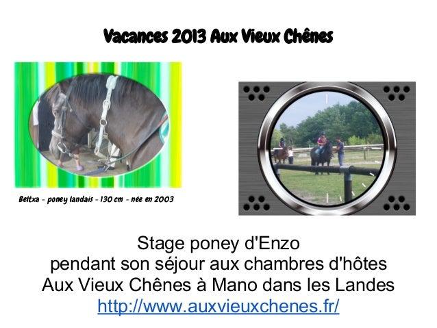 Vacances 2013 Aux Vieux Chênes Stage poney d'Enzo pendant son séjour aux chambres d'hôtes Aux Vieux Chênes à Mano dans les...