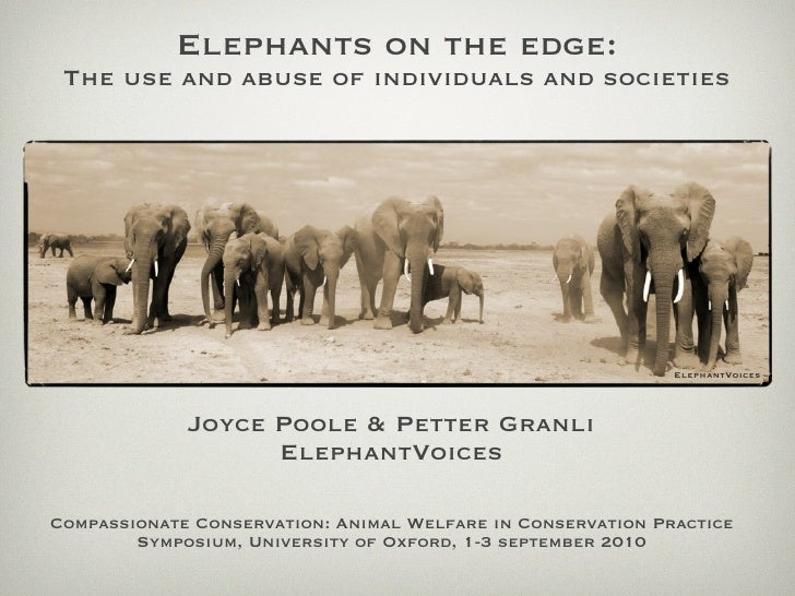Elephants on the edge:  The use and abuse of individuals and societies                                                    ...