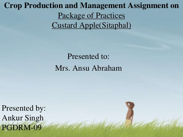 Crop Production and Management Assignment on Package of Practices Custard Apple(Sitaphal)  Presented to: Mrs. Ansu Abraham...