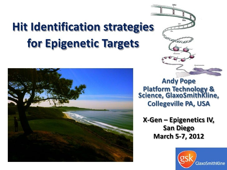 Hit Identification strategies   for Epigenetic Targets                                 Andy Pope                          ...