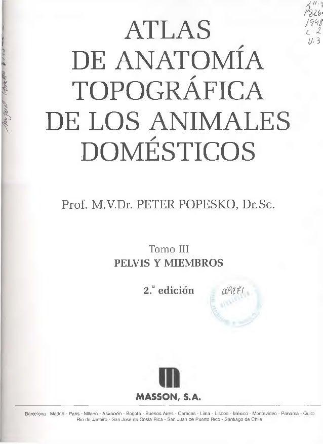 Popesko peter atlas de anatomia topografica de los animales domesti…
