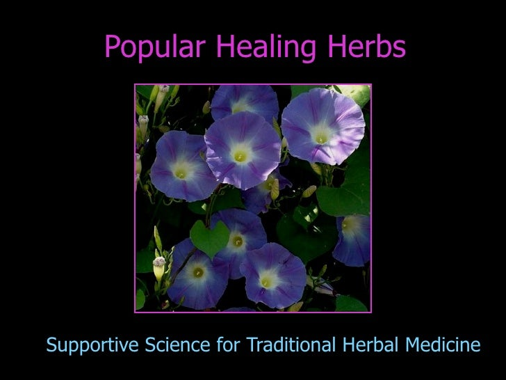 Popular Healing Herbs     Supportive Science for Traditional Herbal Medicine