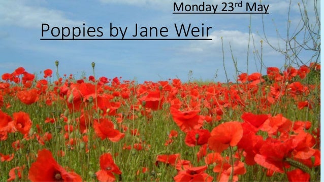 poppies jane weir Poppies poem no great triumphal march for lads like you no pasteboard victory arch, no grand review in working raiment brown you gave your best then laid.