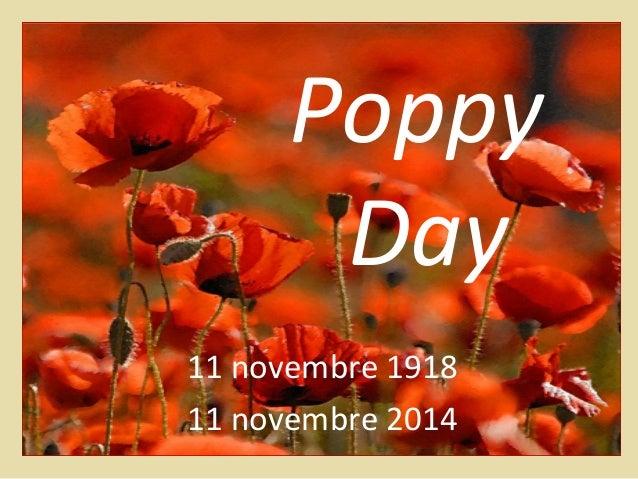Poppy  Day  11 novembre 1918  11 novembre 2014