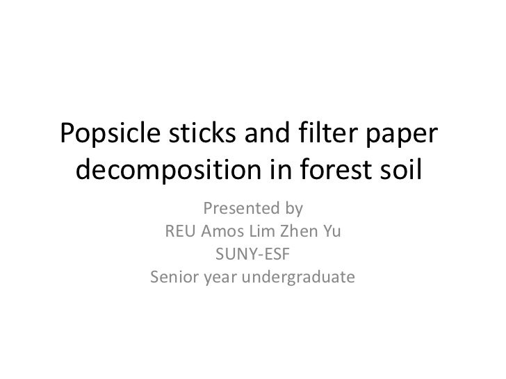 Popsicle sticks and filter paper decomposition in forest soil              Presented by         REU Amos Lim Zhen Yu      ...