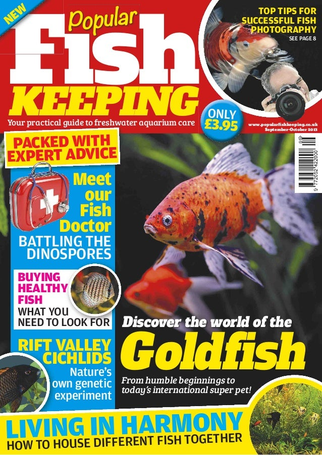 www.popularfishkeeping.co.uk September-October 2013 Meet our Fish Doctor FishKEEPING Goldfish Discover the world of the Fis...
