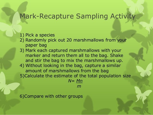 Mark-Recapture Sampling Activity1) Pick a species2) Randomly pick out 20 marshmallows from your   paper bag3) Mark each ca...