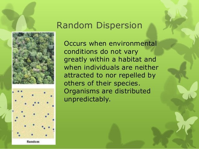 Random Dispersion Occurs when environmental conditions do not vary greatly within a habitat and when individuals are neith...