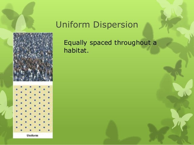 Uniform Dispersion Equally spaced throughout a habitat.