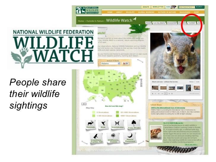 People share their wildlife sightings