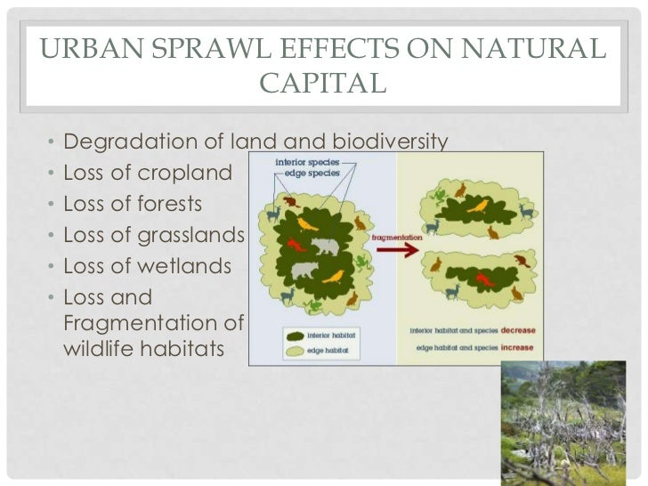 issue of urban sprawl in regina With concerns over urban and suburban sprawl,  newsletter of csun department of urban studies and planning  spring 2014 issue urban studies and planning.