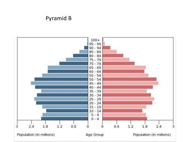 population pyramid ib case studies
