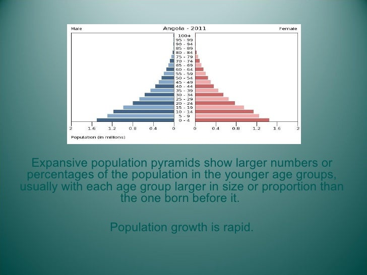 <ul><li>Expansive population pyramids show larger numbers or percentages of the population in the younger age groups, usua...