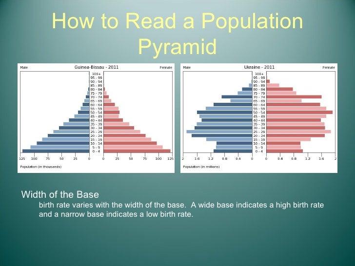 How to Read a Population Pyramid <ul><li>Width of the Base </li></ul><ul><ul><li>birth rate varies with the width of the b...