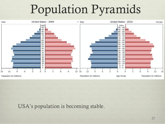 Population Pyramids USA's population is becoming stable. 27