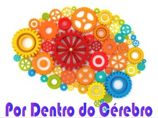 O Cérebro Pelo neurocirurgião Paulo Niemeyer Filho