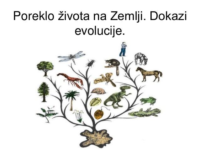 Poreklo života na Zemlji. Dokazi evolucije.