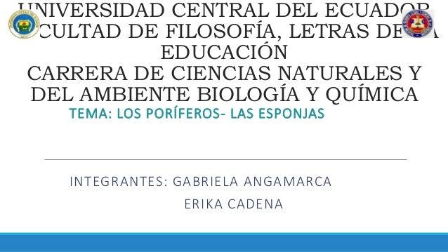 UNIVERSIDAD CENTRAL DEL ECUADOR FACULTAD DE FILOSOFÍA, LETRAS DE LA EDUCACIÓN CARRERA DE CIENCIAS NATURALES Y DEL AMBIENTE...