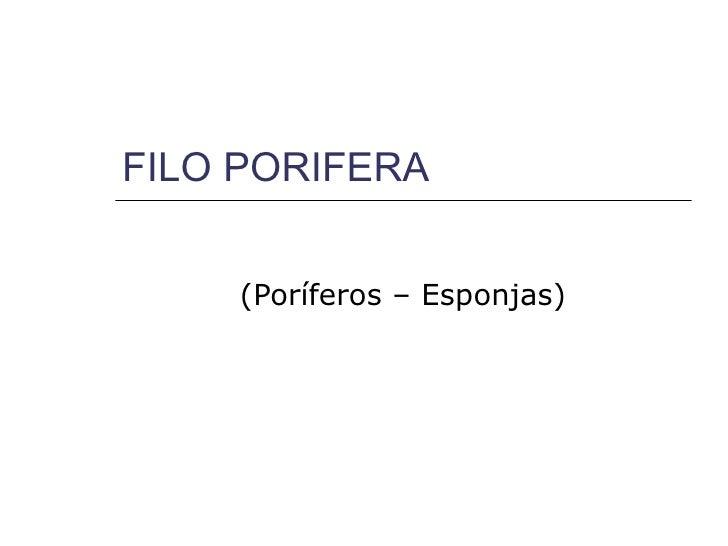 FILO PORIFERA    (Poríferos – Esponjas)