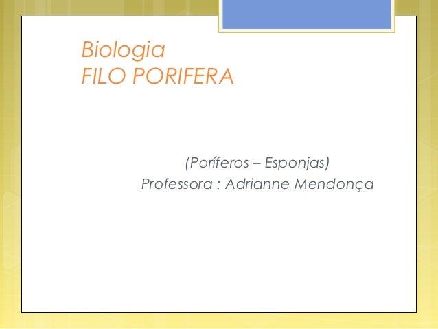BiologiaFILO PORIFERA           (Poríferos – Esponjas)     Professora : Adrianne Mendonça