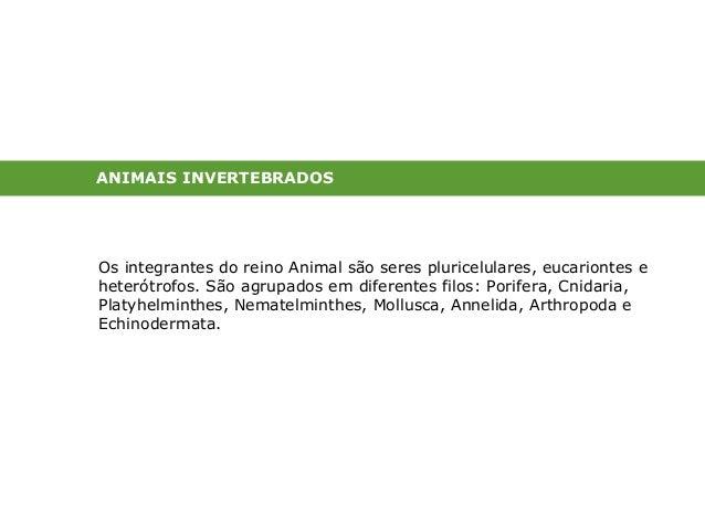 ANIMAIS INVERTEBRADOS  Os integrantes do reino Animal são seres pluricelulares, eucariontes e  heterótrofos. São agrupados...