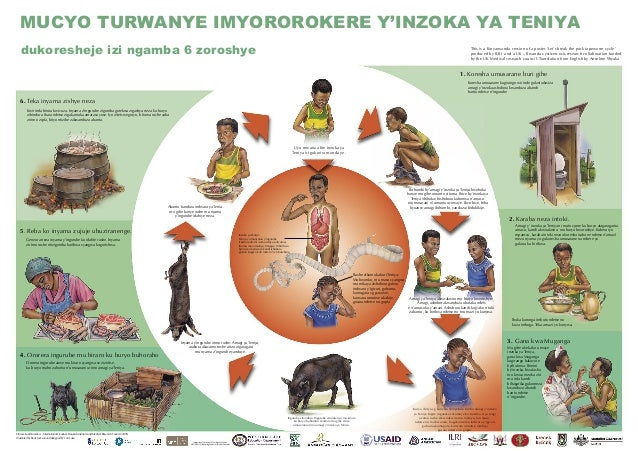 Uyu mwana afite inzoka ya Teniya iri gukurira munda ye. Inzoka ya Teniya: Teniya yo munyama y'ingurube (Taenia solium) (so...