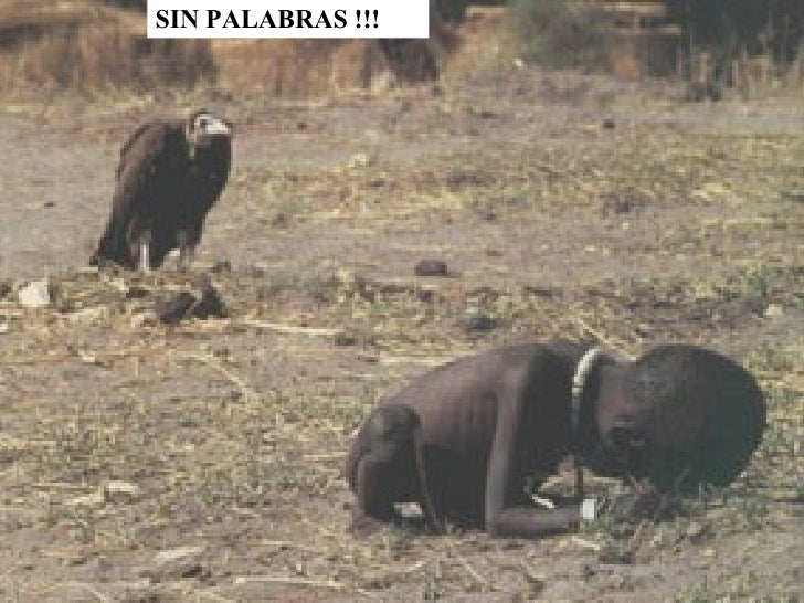 SIN PALABRAS !!!