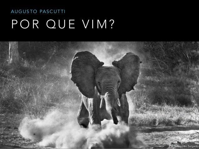 P O R Q U E V I M ? A U G U S T O PA S C U T T I Sebastião Salgado