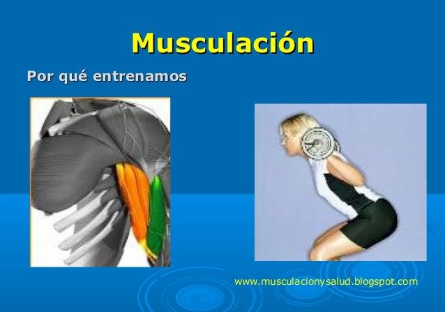 MusculaciónMusculación Por qué entrenamosPor qué entrenamos www.musculacionysalud.blogspot.com