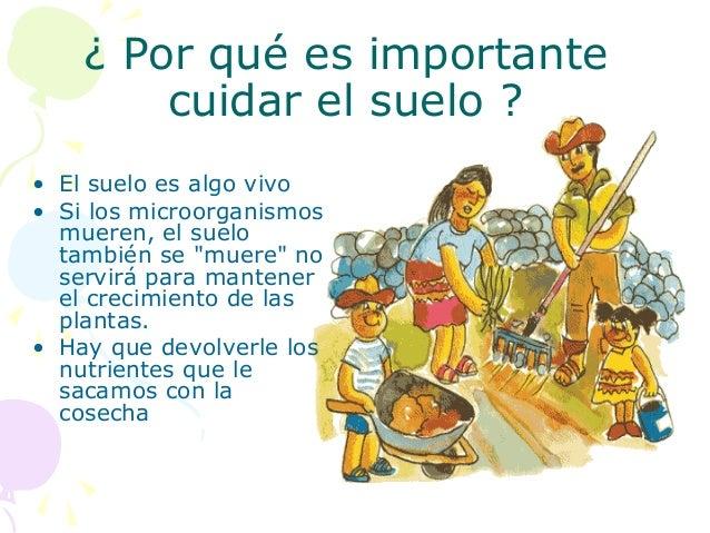 Por qu es importante cuidar el suelo 2 for Informacion sobre el suelo
