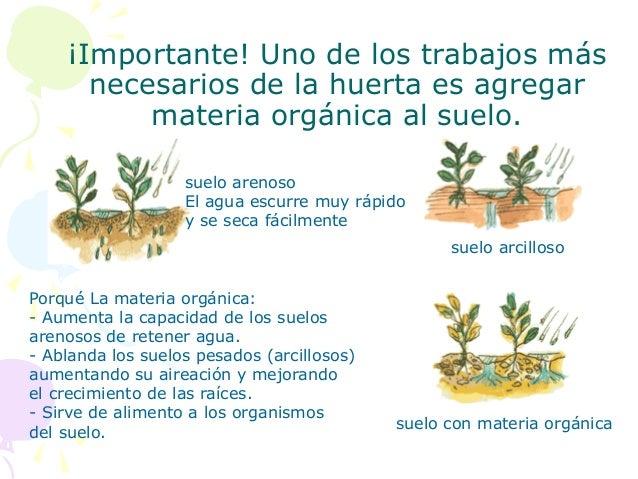 Por qué es importante cuidar el suelo (2)