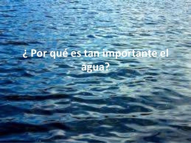 ¿ Por qué es tan importante el            agua?