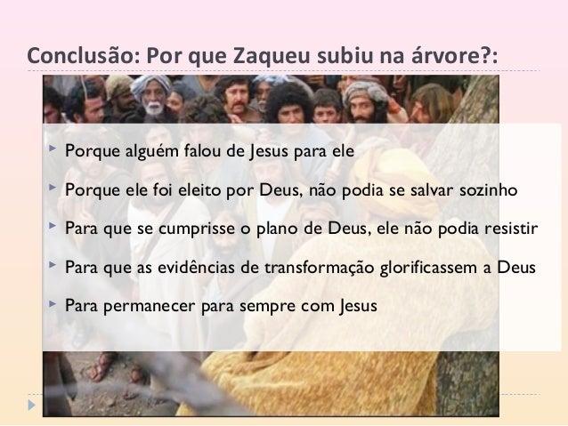 Conclusão: Por que Zaqueu subiu na árvore?:  Porque alguém falou de Jesus para ele  Porque ele foi eleito por Deus, não ...
