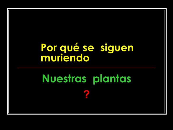Por qué se  siguen muriendo Nuestras  plantas ?