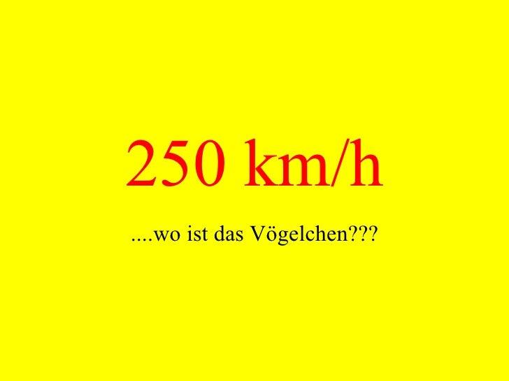 250 km/h ....wo ist das Vögelchen???
