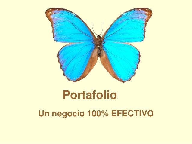 Portafolio Un negocio 100% EFECTIVO