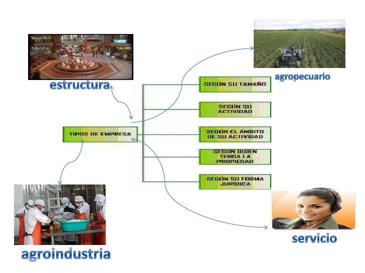 agropecuario<br />estructura<br />servicio<br />agroindustria<br />