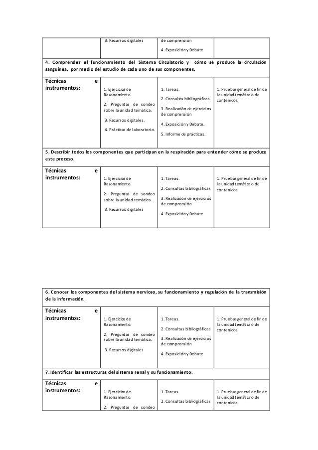 Hermosa Anatomía Funcional Del Sistema Urinario Ejercicio 26 ...