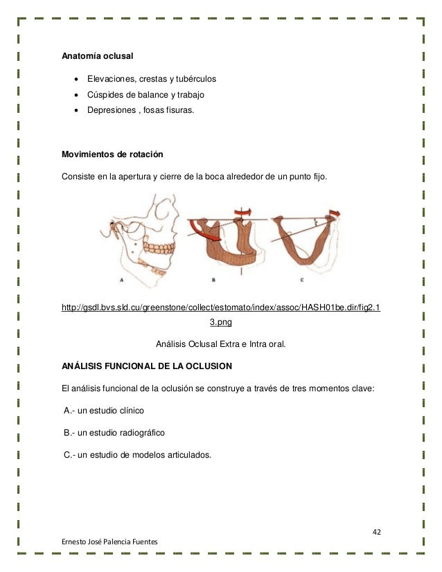 Magnífico Ruedas Dental Fisiología Anatomía Y La Oclusión Colección ...