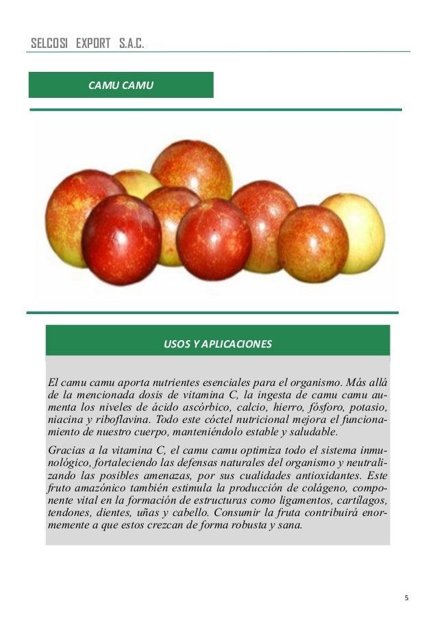 5 CAMU CAMU USOS Y APLICACIONES El camu camu aporta nutrientes esenciales para el organismo. Más allá de la mencionada dos...