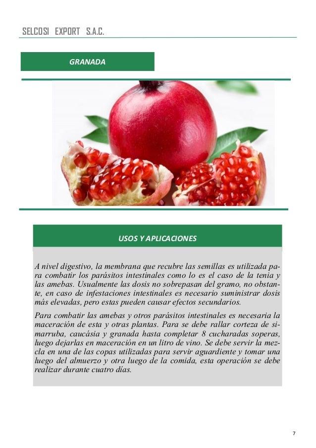7 USOS Y APLICACIONES A nivel digestivo, la membrana que recubre las semillas es utilizada pa- ra combatir los parásitos i...