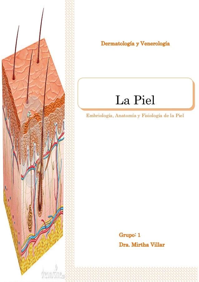 Portafolio dermatologia