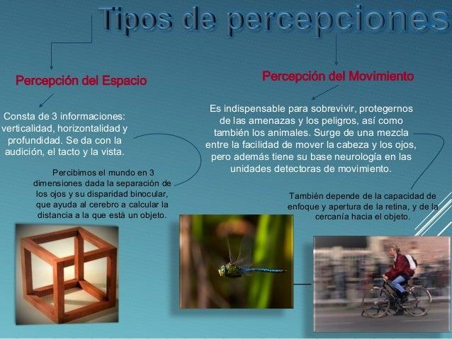 Portafolio virtual: Percepción, Conductimos y Psicoanális.