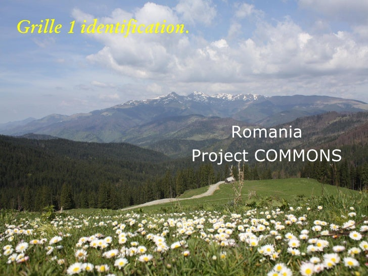 Grille 1 identification.                                     Romania                            Project COMMONS