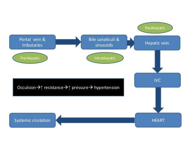 PostHepatic  Portal vein & tributaries PreHepatic  Bile canaliculi & sinusoids  Hepatic vein  IntraHepatic  IVC Occulsion...