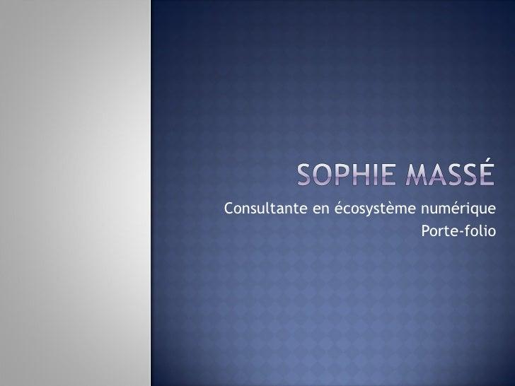 Consultante en  écosystème numérique Porte-folio